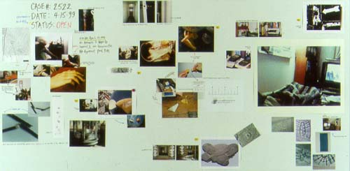 Aki Fujiyoshi: Self-Investigation (Case#2522), 1999, board, c-print and ink jet prints.
