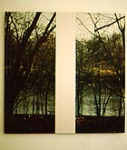 "Mary Ellen Carroll, ""View from the Farnsworth House,"" 1998, at Frederieke Taylor TZ'Art"