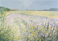 field with flowers by cor van loenen