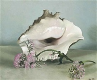 a conch shell and pinks by anna katrina zinkeisen