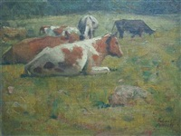 cows resting by robert wesley amick