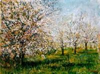 cseresznyefa-virágzás (cherry-tree, blossoming) by janus halapy