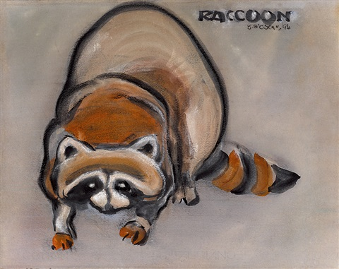 浣熊 raccoon by liu chiwei