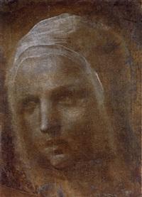 tête de femme portant un voile by domenico beccafumi