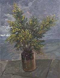 gorse by jerymiah hoad