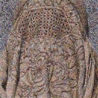 veil iii by rashid rana