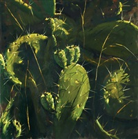 cacti by ilan baruch