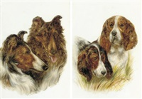 two collies jock and lucy (+ best friends, two spaniels; pair) by bessie bamber