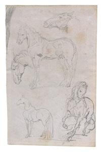 trois études de chevaux et deux reprises de têtes by théodore géricault