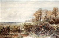 tom knocker's wood, the hilly fields, harborne, birmingham by charles thomas burt