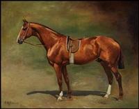 race horse by tadeusz ajdukiewicz