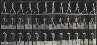man walking from animal locomotion, plate 1; woman dancing, from animal locomotion, plate 189 (2 works) by eadweard muybridge