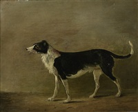 maida, sir walter scott's dog by alexander nasmyth