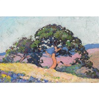 california joshua trees in summer by james albert holden