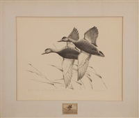 black ducks (federal duck stamp design) by francis lee jaques