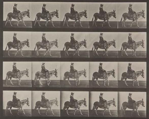 animal locomotion, pl. 666 (petite fille sur un âne) by eadweard muybridge