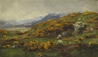 gorse and may by david farquharson