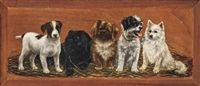 the usual suspects by bessie bamber