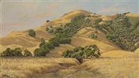 marin hills by jack wisby