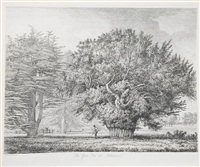 the abbot's oak at woburn; the yew tree at ankerwyke; the tortworth chestnut; willow at bury st. edmunds; the great oak at mocca's court; queen elizabeth's oak; and the sakey forest oak by jacob george strutt