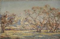 paysage de montagne au crépuscule by ricardo gomez campuzano