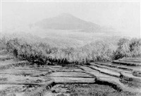 a panoramic view of sawahs in a landscape by soerjosoebroto abdullah