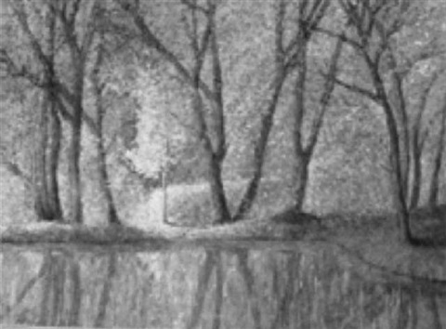 arbres et reflet by enrique ahil