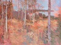 view of lake through forrest trees by terence p. flanagan