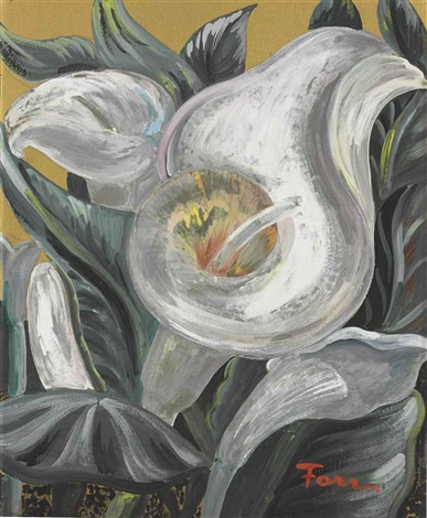 calla lily by helen torr