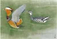 mandarin ducks by atsushi uemura