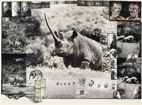 world class rhino aberdare forest by peter beard