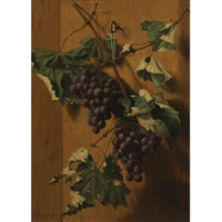 grapes hanging on a wall by a. platte little