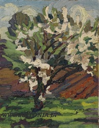 flowering tree by aleksanders sträls