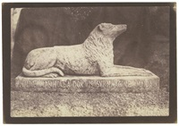 sir walter scott's favorite dog, maida (from sun pictures in scotland) by william henry fox talbot