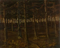 trees by albijn van der abeele