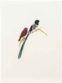 birds by fred tomaselli