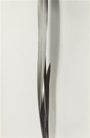 flax by imogen cunningham