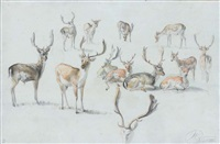 cerfs (study) by jan van ravenswaay