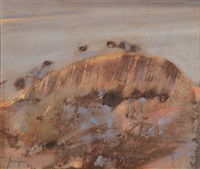 big rock at merredin by robert litchfield juniper
