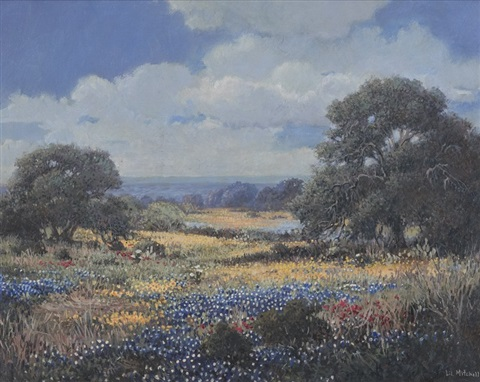 hill country flowers by lillias mitchell