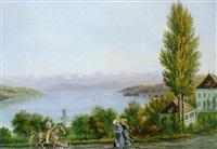 muraltengut, mit blick auf den zürichsee by david kolliker
