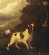 an english springer spaniel and a grey cat in a landscape by adriaen beeldemaker