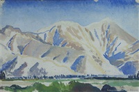 mt peel from ruapuna by robert nettleton field