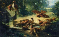 les oiseaux by henry collen