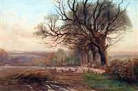 sheep grazing in a country landscape by charles james adams