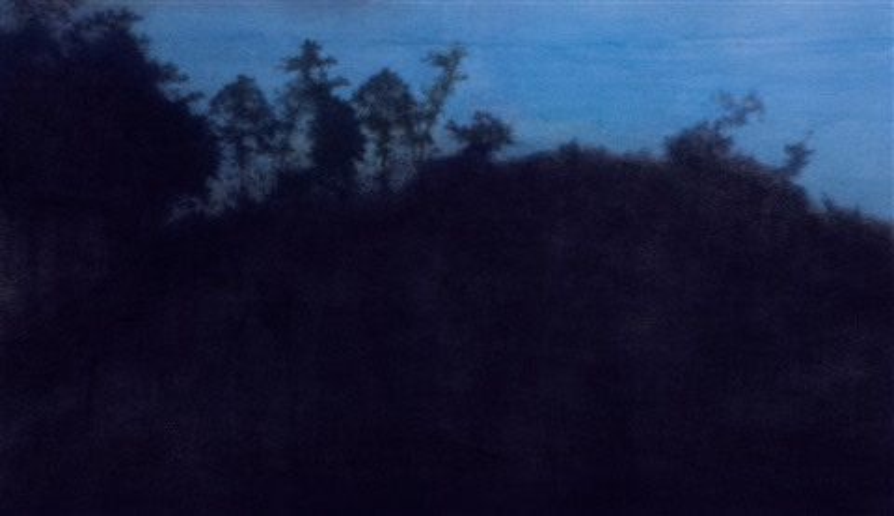 the shadow of tree by kang haitao