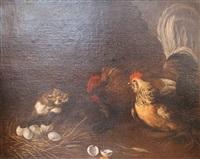 poules protégeant leurs oeufs by felice boselli