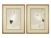 red-crowned crane by shoko uemura