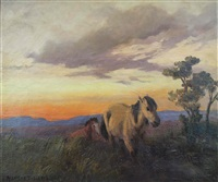 horses at sunset by allerley glossop