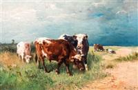 koeien in duinlandschap by henry schouten